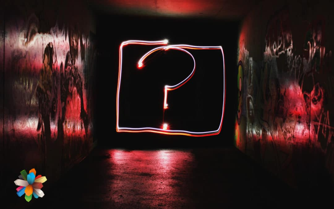 Questions on Creativity & Transformation